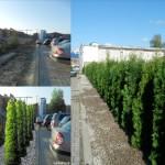realizacje ogrodowe