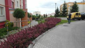 ogród podblokiem