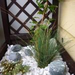 ogród balkonowy