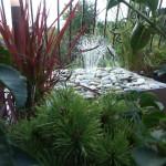 fontanna tarasowa
