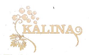Kalina – projektowanie i realizacje ogrodów